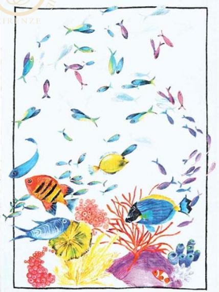 BELIZE corallo