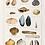 Thumbnail: LA MER Pescei