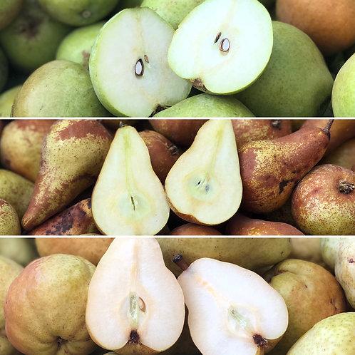 Organic Pears Mix (5 lbs)