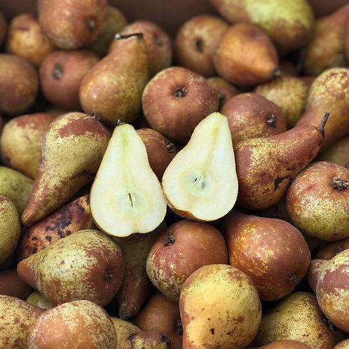 Organic Bosc Pear