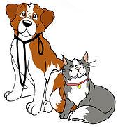 cane-e-gatto1[1].jpg