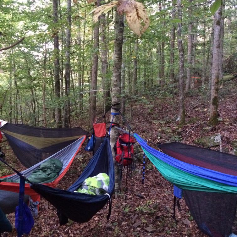 architects-fayetteville-ar-hammocking