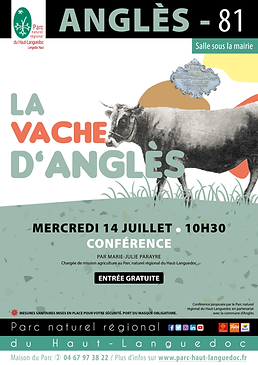 affiches Animations2021_vache angles.png