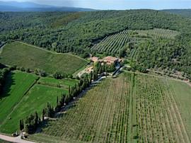 Villa Buoninsegna |Holidays in Tuscany