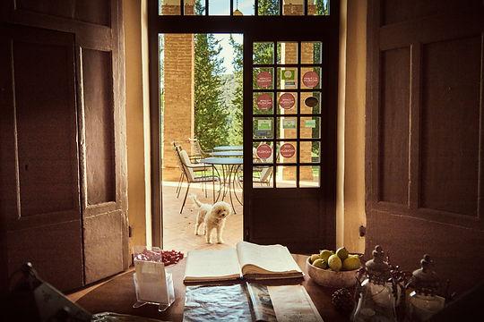B&B Villa Buoninsegna Tuscany