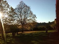 Garden | Villa Buoninsegna