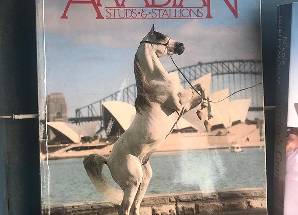 Arabian Studs & Stalions