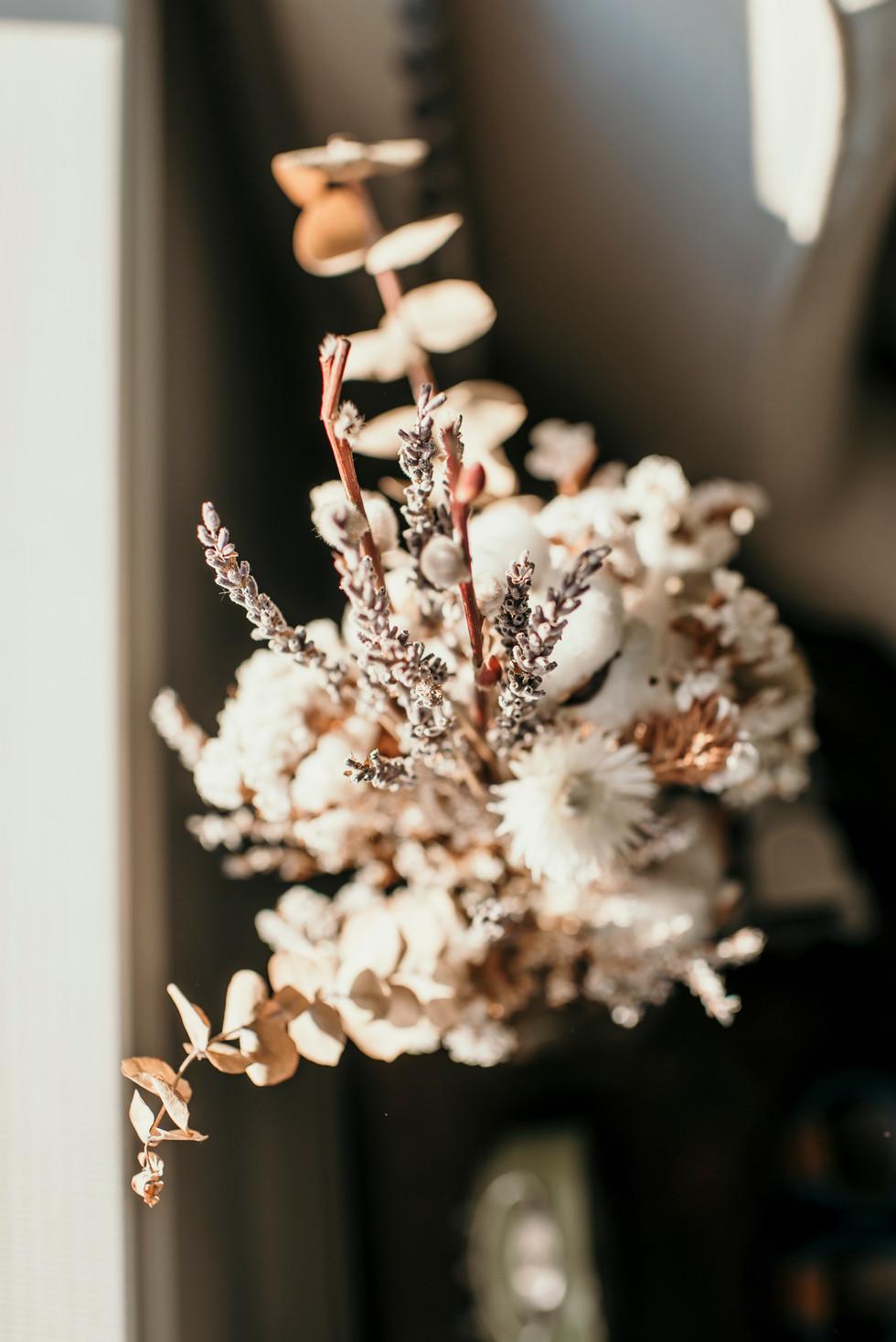 Shelby Rose Photographycam-38.jpg