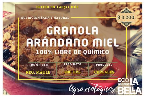 Granola de Miel y Arándano