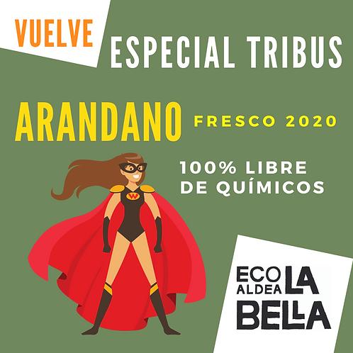 Arandano Fresco 1,25k C