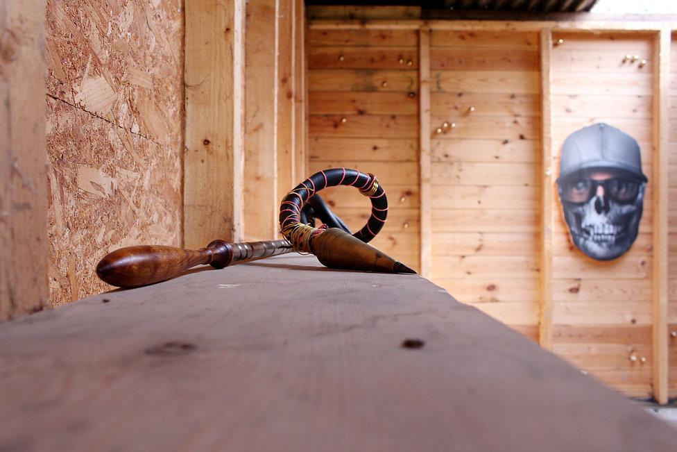 bill arning horse shed lovie 1.jpg