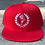 Thumbnail: solid colors Logo SnapBack