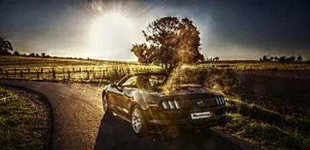 Mustang 1.webp