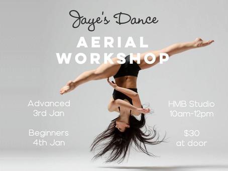 aerial workshops