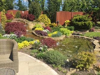 Hale Village Gardens Open For The National Garden Scheme During June