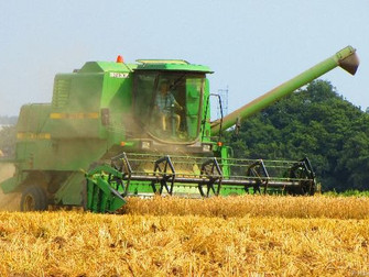 The Hale Harvest Is Well Underway