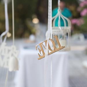 Dilesi Destination Wedding