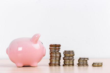 money-accumulation-concept-money-and-pig