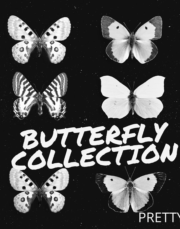 BUTTERFLY%20COLLECTION%20(1)_edited.jpg