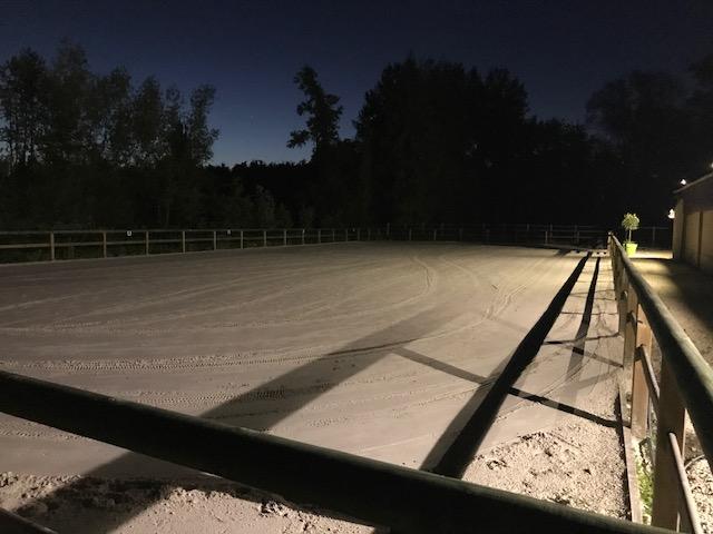 Carrière Dressage de nuit
