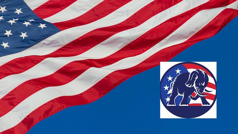 Flag with elephant icon.jpg