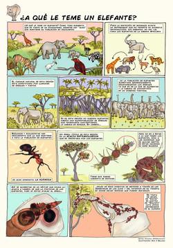 A qué le teme un elefante