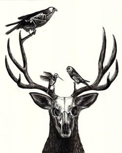 Naturaleza Muerta I