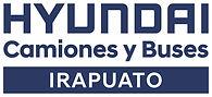 Logo Irapuato.jpg