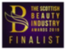 Finalist Logo _ SBIA 2019-01.jpg