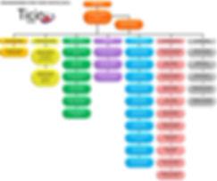 Organigramma FE.jpg