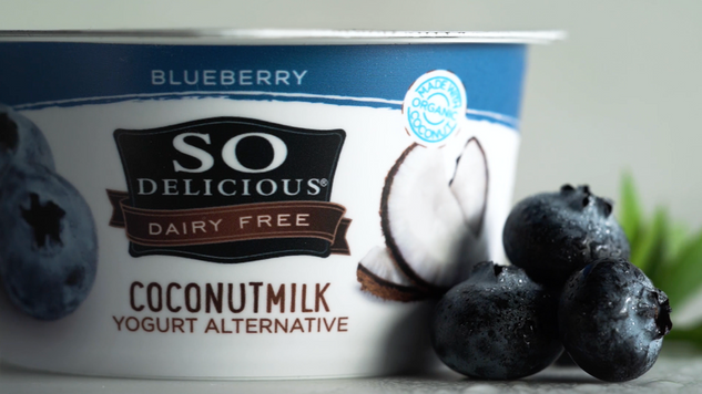 So Delicious Blueberry Coconut Yogurt