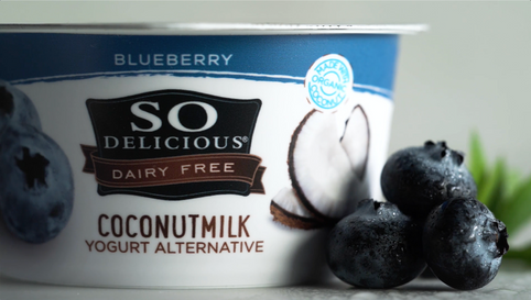 So Delicious Blueberry Coconut Yogurt