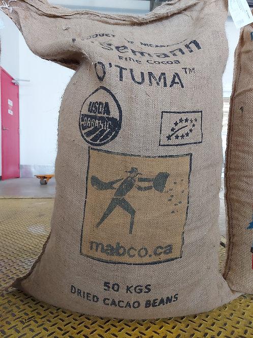 Organic Nicaragua O:Tuma cocoa beans