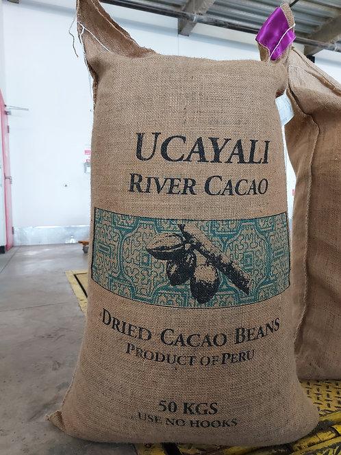 Premium Ucayali River Peruvian Cocoa Beans