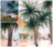 robellini palm.jpg