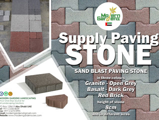 PAVING STONE - New Product