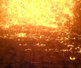 Fornalha da Caldeira: 1100ºC