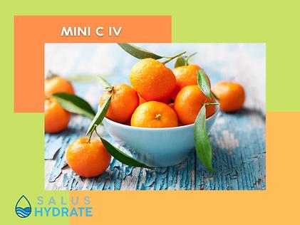Salus Hydrate Mini C IV.png