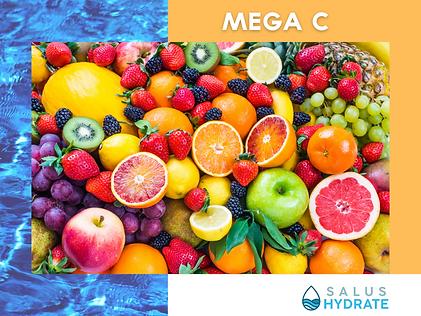 Salus Hydrate Mega C IV.png