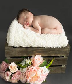 newborn photographer, newborn