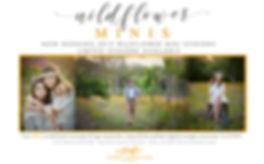 Wildflowers2019.jpg