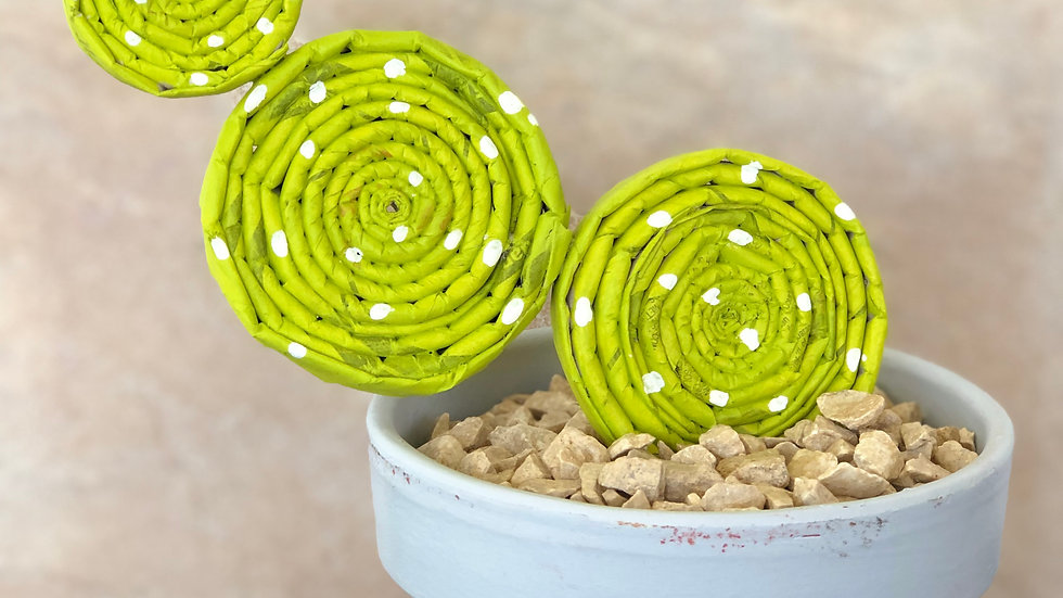 Cactus / Recycling