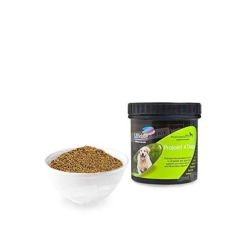 ProJoint 4 Dogs 關節保健粉 (小)   ProJoint 4 Dogs Supplement (Small)