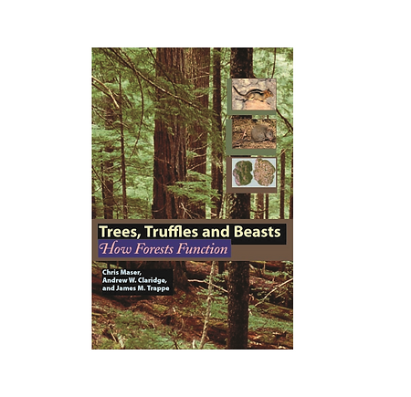 trees truffles.png