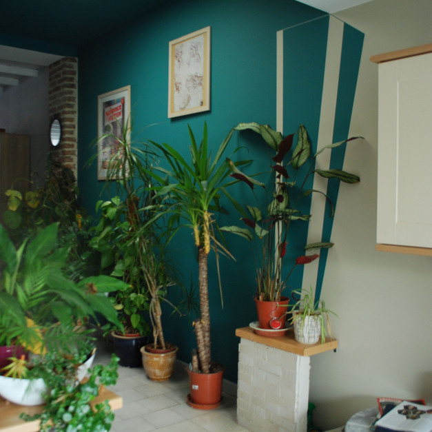Le nouvel écrin des plantes