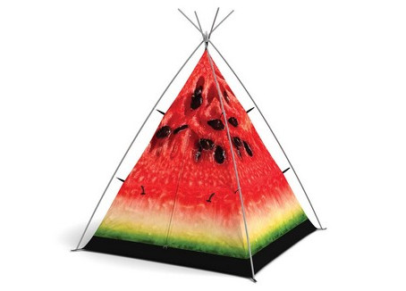 The FieldCandy Little Camper review