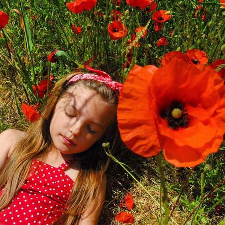 Poppy Fields and Wild Flowers