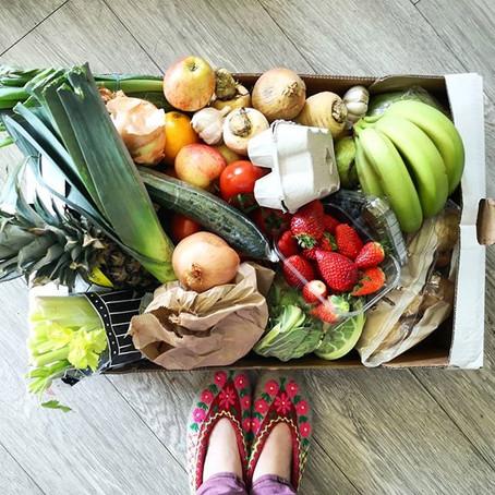 Should I choose a plant-based diet?