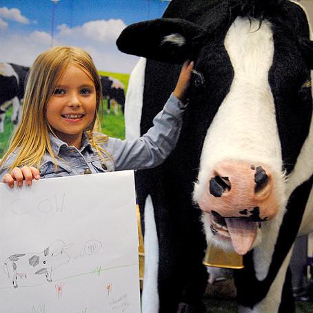 Adopt a Cow art class with Cadbury