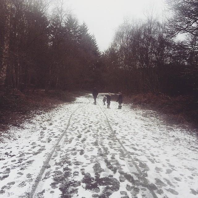 Instagram - #snow #woods #winter #abinger